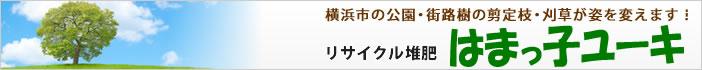 横浜市の公園・街路樹の剪定枝・刈草が姿を変えます! リサイクル堆肥「はまっ子ユーキ」